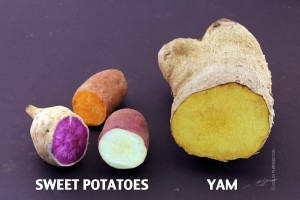 Photograph of sweet potatoes and yam