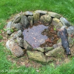Fire pit with stagnant water