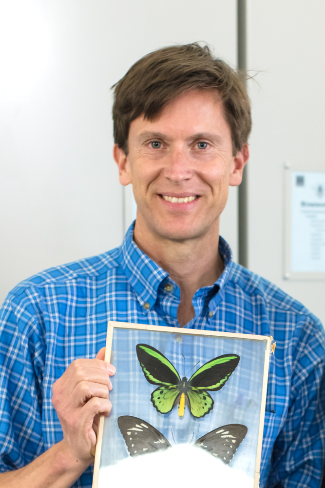 Photograph of Colin Purrington. Holding a framed Ornithoptera priamus.