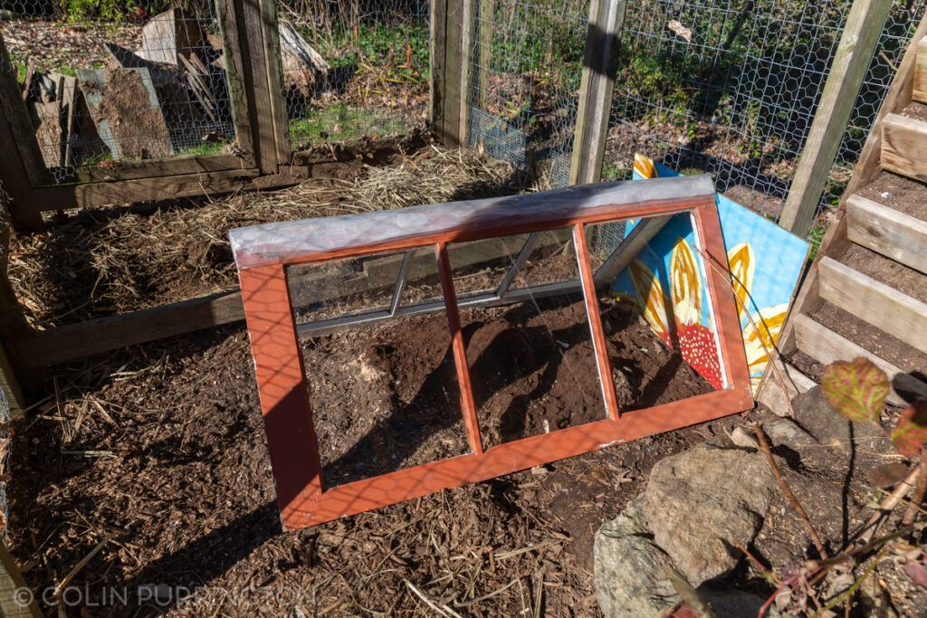 Dust bath for chickens protected by two windows joined with hinges